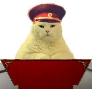 dictator-cat